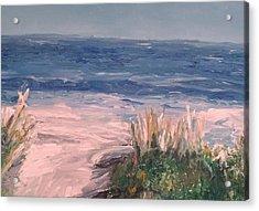 Down The Shore Acrylic Print by Eric  Schiabor