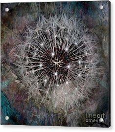 Down To Earth Acrylic Print by Tlynn Brentnall