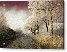 Down Winter Road Acrylic Print