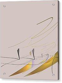 Downhill Racer Acrylic Print by John Krakora
