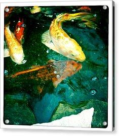 Downstream 3 Acrylic Print