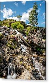 Downstream Acrylic Print by Adrian Evans