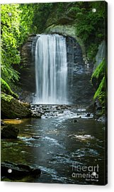 Acrylic Print featuring the photograph Downstream Shade Looking Glass Falls Great Smoky Mountains Art by Reid Callaway