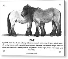 Draft Horses With Bible Verse About Love Acrylic Print by Joyce Geleynse