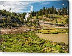 Dragon Geyser At Yellowstone Acrylic Print