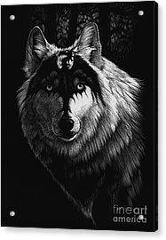 Dragon Wolf Acrylic Print