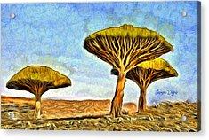 Dragonblood Trees Acrylic Print by Leonardo Digenio