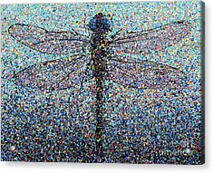 Dragonfly #1 Acrylic Print by Michael Glass