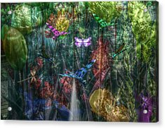 Dragonfly Dream Acrylic Print by Bill Oliver