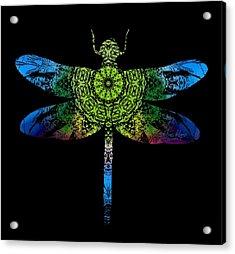 Dragonfly Kaleidoscope Acrylic Print