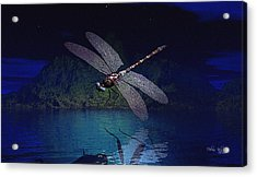 Dragonfly Night Reflections Acrylic Print