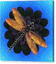 Acrylic Print featuring the digital art Dragonfly Snookum by Iowan Stone-Flowers