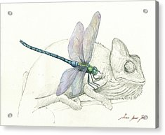 Dragonfly With Chameleon Acrylic Print by Juan Bosco