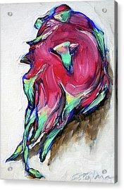 Dragonfruit Acrylic Print by Sheila Tajima