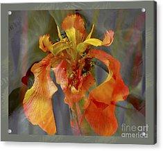 Dragons Breath Acrylic Print by Chuck Brittenham