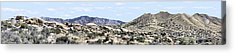 Dragoon Mountains Panorama Acrylic Print by Sharon Broucek
