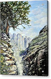 Acrylic Print featuring the painting Drakensberg by Heidi Kriel