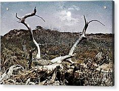 Dramatic Landscsape Acrylic Print