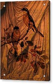Draw Back The Curtain Acrylic Print by Sarah Vernon
