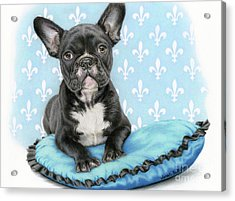 Draw Me Like One Of Your French Girls Acrylic Print