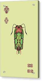 Dread Bug Specimen Acrylic Print