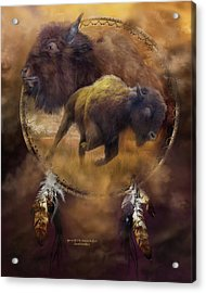Dream Catcher - Spirit Of The Brown Buffalo Acrylic Print