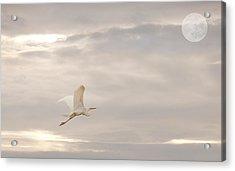 Dream Dream Dream Acrylic Print by Gouzel -