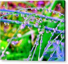 Dream Drops Acrylic Print by JoAnn SkyWatcher