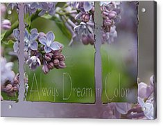 Dream In Color Acrylic Print by Tingy Wende