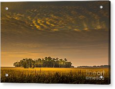 Dream Land Acrylic Print by Marvin Spates