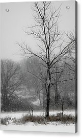 Dream Of Winter Acrylic Print