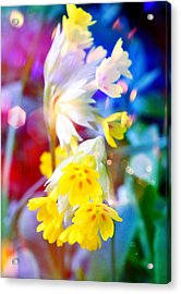 Dream Of Yellow Flowers Acrylic Print