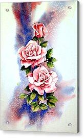 Dream Roses Acrylic Print by Brooke Lyman
