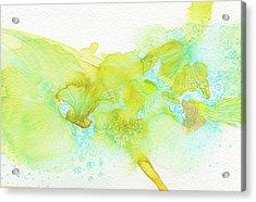 Dream - #ss16dw053 Acrylic Print by Satomi Sugimoto