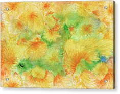 Dream - #ss16dw057 Acrylic Print by Satomi Sugimoto