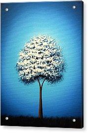 Dream The Night Acrylic Print by Rachel Bingaman