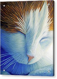 Dream Within A Dream Acrylic Print by Brian  Commerford