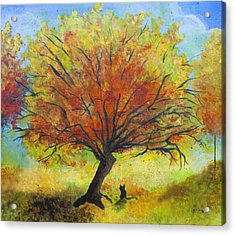 Dreaming Amber Acrylic Print