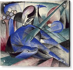 Dreaming Horse Acrylic Print by Franz Marc