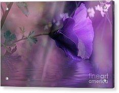Dreaming In Purple Acrylic Print