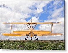 Dreaming Of Flight Acrylic Print