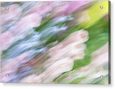 Dreaming Of Flowers 1 Acrylic Print