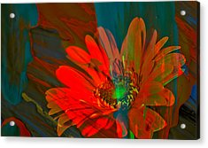 Acrylic Print featuring the photograph Dreaming Of Flowers by Jeff Swan
