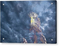 Dreaming Of The Sky Acrylic Print