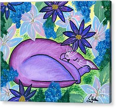 Dreaming Sleeping Purple Cat Acrylic Print