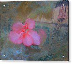 Dreams #25 Acrylic Print
