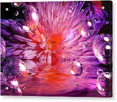 Dreams 3 Chrysanthemum Acrylic Print