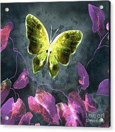 Dreams Of Butterflies Acrylic Print