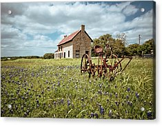 Acrylic Print featuring the photograph Dreams Of Long Ago by Linda Unger