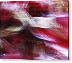 Dreamscape-3 Acrylic Print